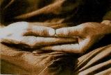 wpid-mediter-2013-12-7-18-58.jpg